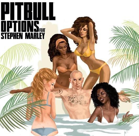 pitbulloptions