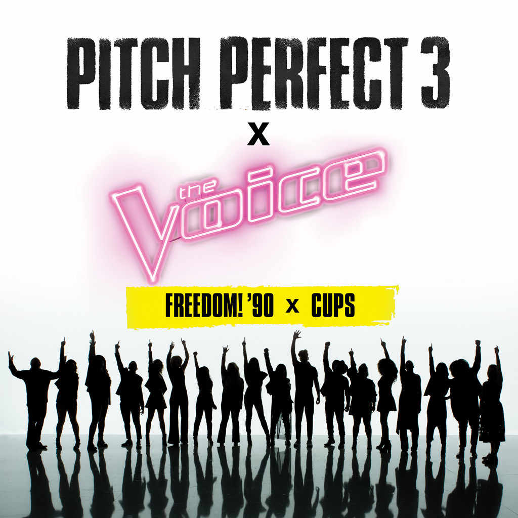 PP3 THE VOICE