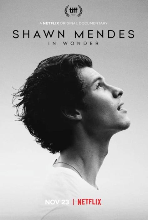In Wonder - Shawn Mendes